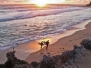 Margaret River Picture of The Day February 2012