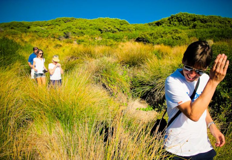 The Cape to Cape Walk Track is one of Australia's greatest long-distance walk trails