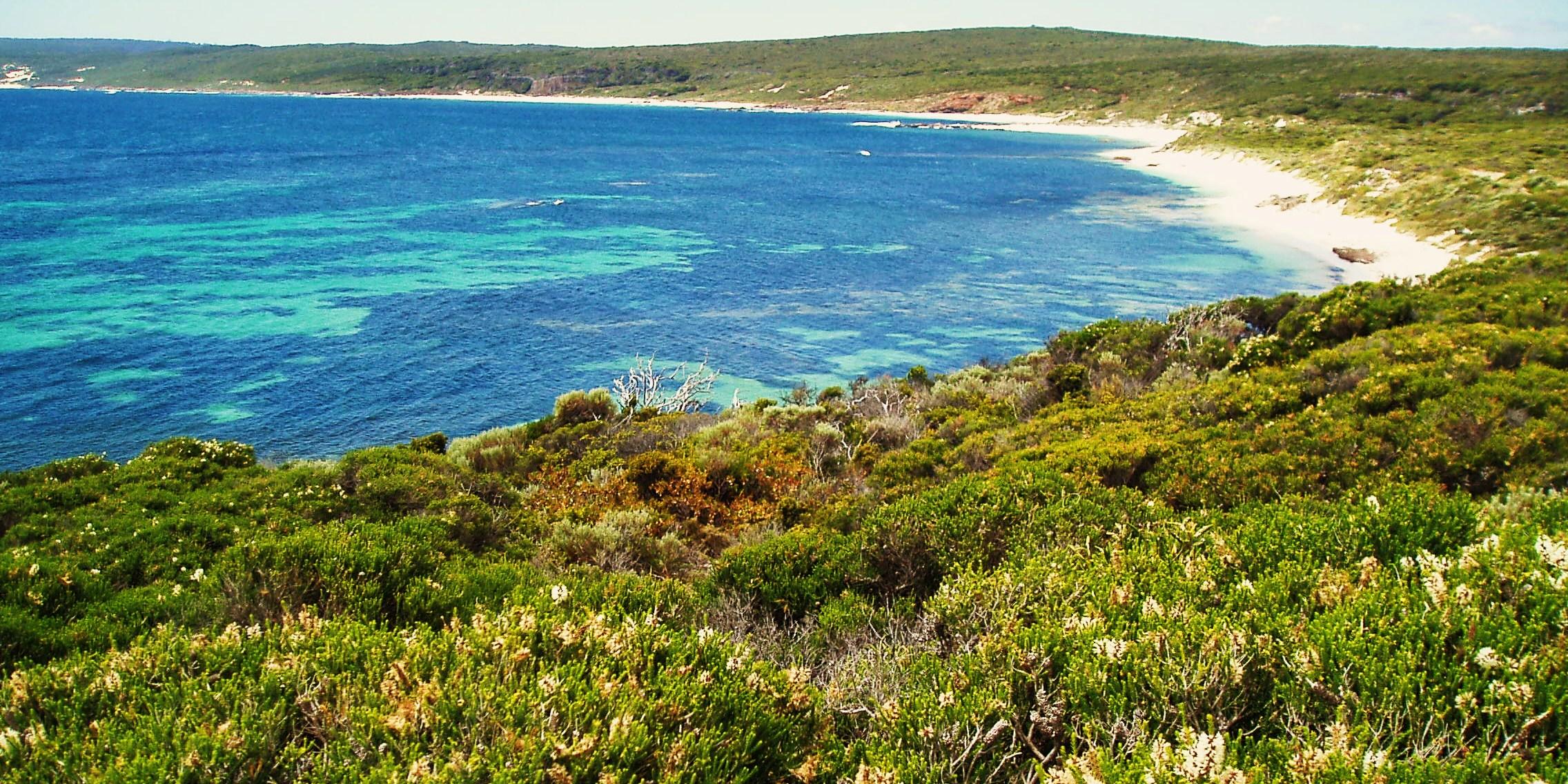 Kilcarnup Beach along the Cape to Cape track