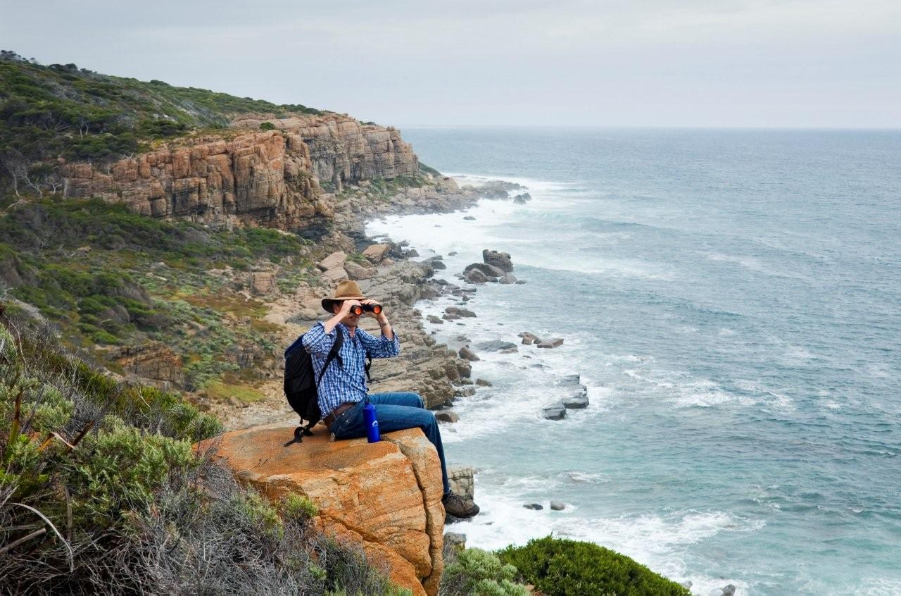 The Wilyabrup Cliffs section of the Cape to Cape Track