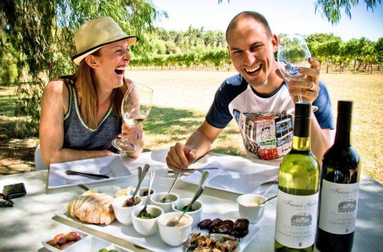 In the Vineyard vintage 2013