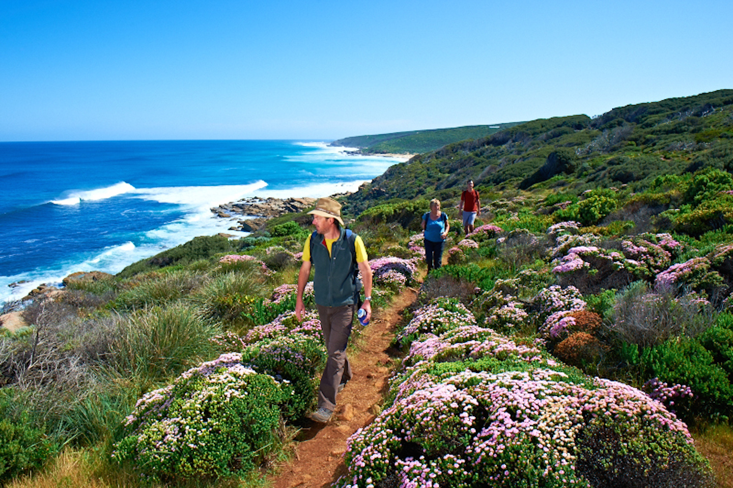 Margaret River Wildflower season on the Cape to Cape Tack with the Margaret River Discovery Co
