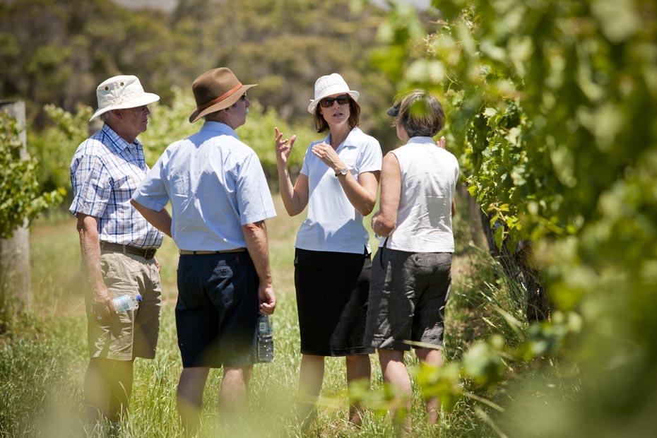 Margaret River Best of the best wine tour 3