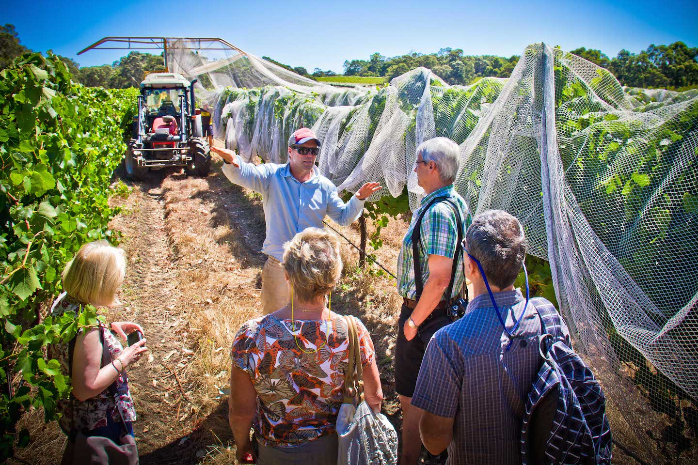 Behind the scenes in a Margaret River vineyards on the Best of the Best Wine Tour with Margaret River Discovery Co