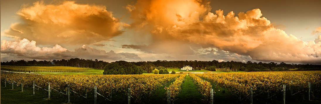 Special access to Fraser Gallop Estate on the Margaret River Discovery Tour