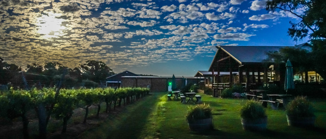 Cullen vineyard under the November 2016 Supermoon