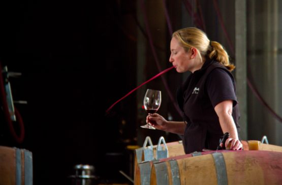 Margaret River Wine Tasting Video Masterclass