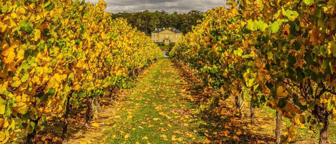 Fraser Gallop Estate in Autumn